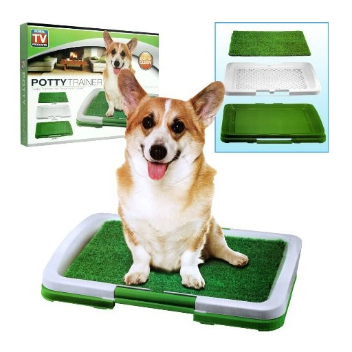 Dog Potty Trainer For Sale