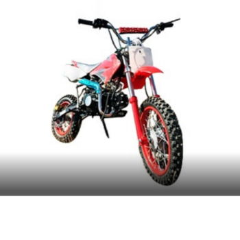 1472987548-pitbike